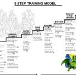 The Army 8 Step Training Model